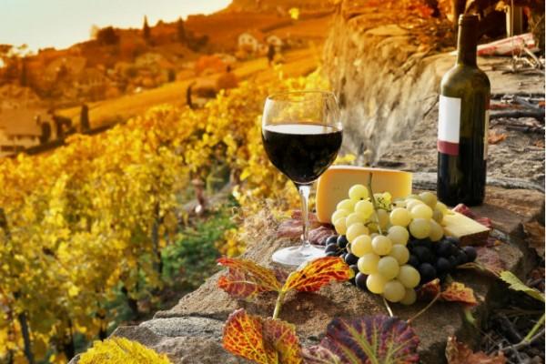 Винодельни Европы