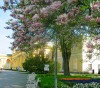 Цветущие магнолии у входа во дворец, Варшава