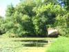 Готический мостик в глубине парка, Варшава, Дворец Вилянув