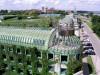 Смотровая площадка на крыше, Варшава, Библиотека Варшавского Унивеситета