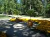 В парке..., Варшава, Дворец Вилянув